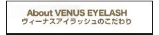 VENUS EYELASHとは